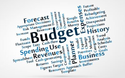 Budget Planning in the New Year