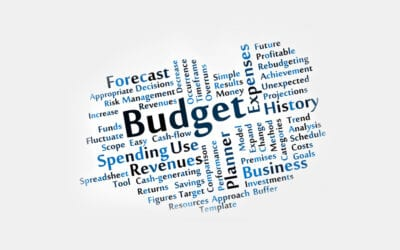 Making Sense: Budgeting