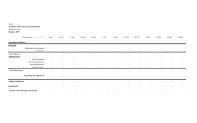 13-Week Cash Flow Template