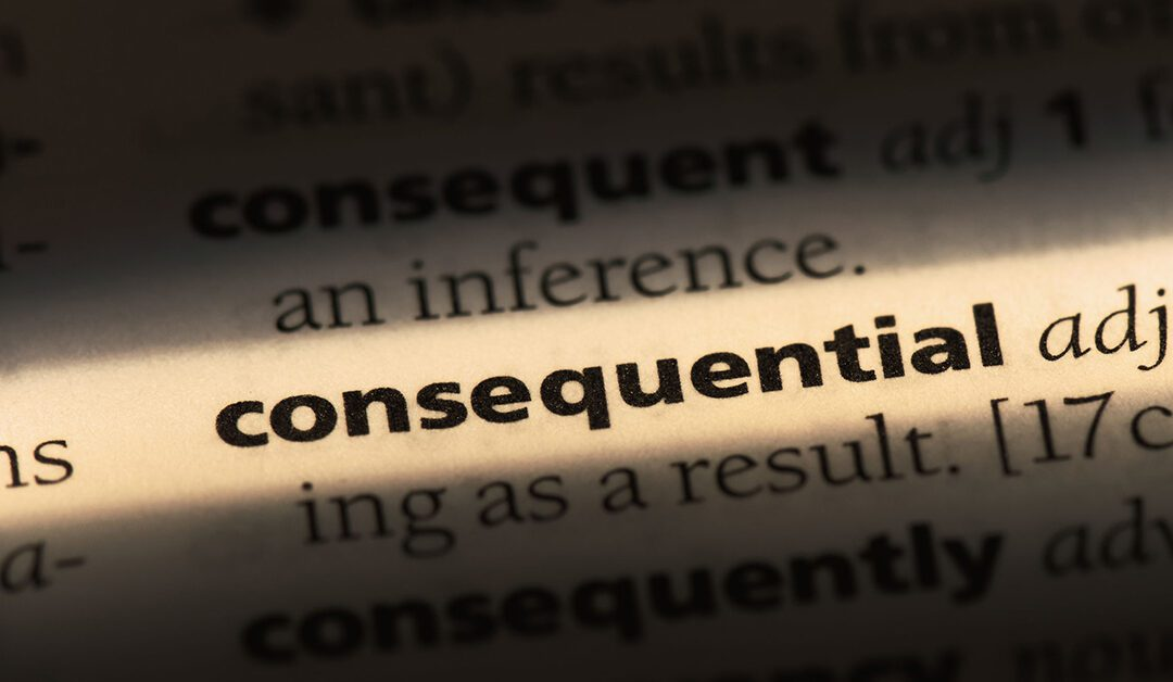 The Inconsequential Owner